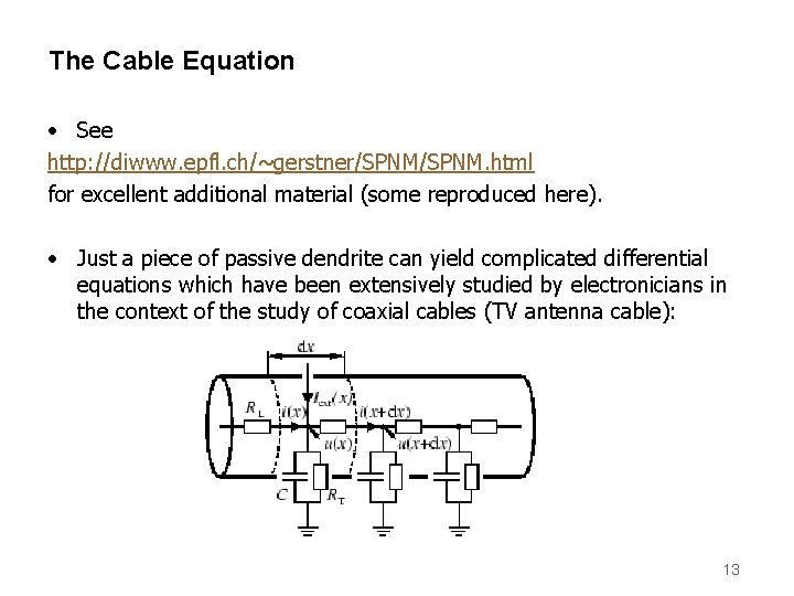 The Cable Equation • See http: //diwww. epfl. ch/~gerstner/SPNM. html for excellent additional material
