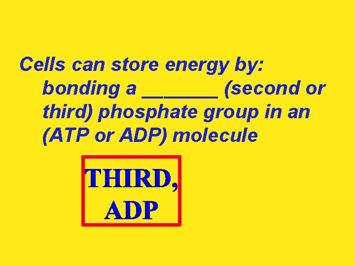 Cells can store energy by: bonding a _______ (second or third) phosphate group in