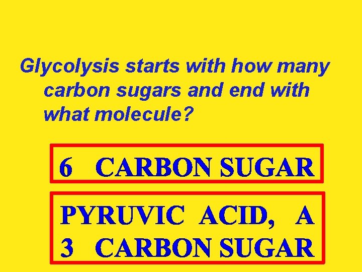 Glycolysis starts with how many carbon sugars and end with what molecule?