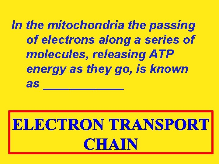 In the mitochondria the passing of electrons along a series of molecules, releasing ATP