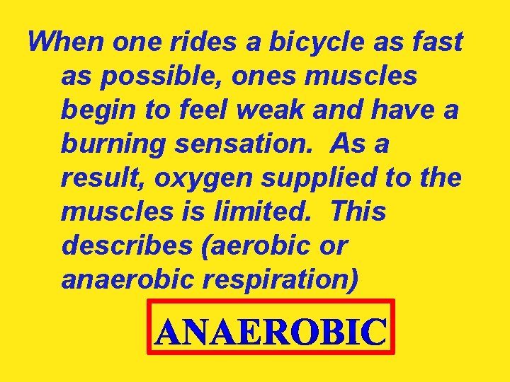 When one rides a bicycle as fast as possible, ones muscles begin to feel