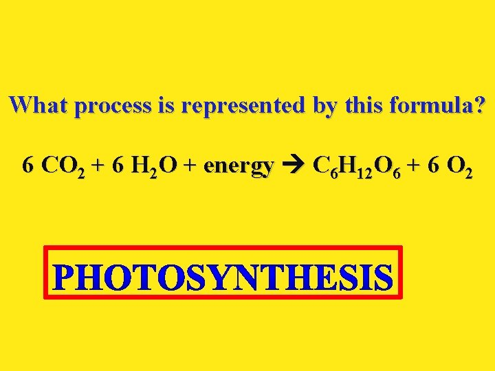 What process is represented by this formula? 6 CO 2 + 6 H 2