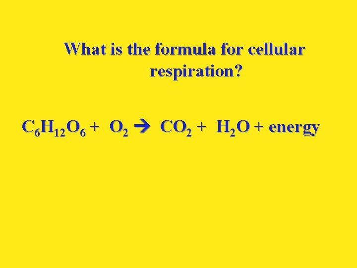 What is the formula for cellular respiration? C 6 H 12 O 6 +