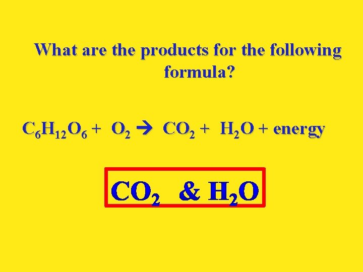 What are the products for the following formula? C 6 H 12 O 6