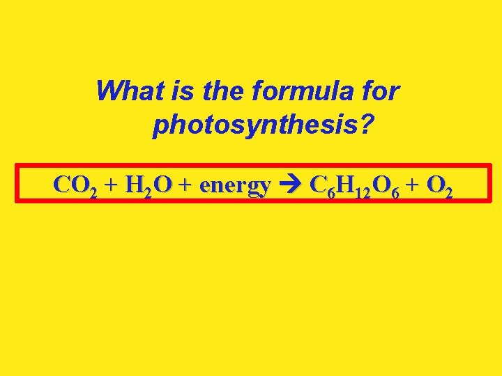 What is the formula for photosynthesis? CO 2 + H 2 O + energy