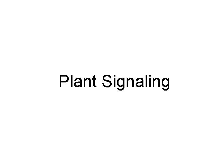 Plant Signaling