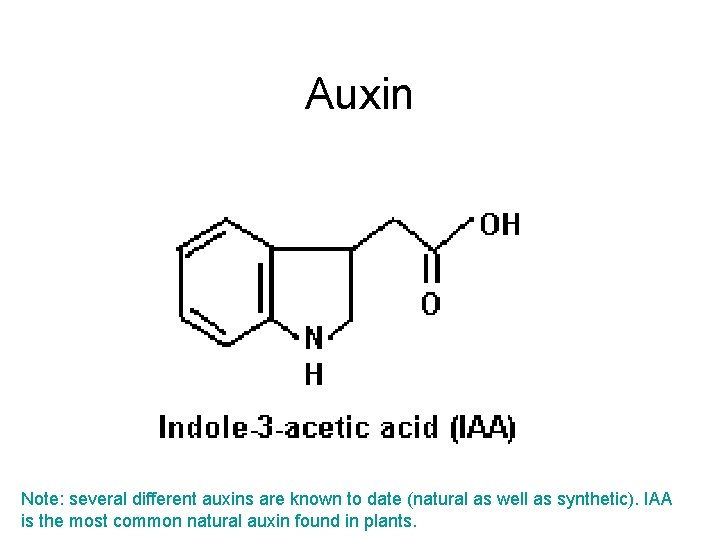 Auxin Note: several different auxins are known to date (natural as well as synthetic).