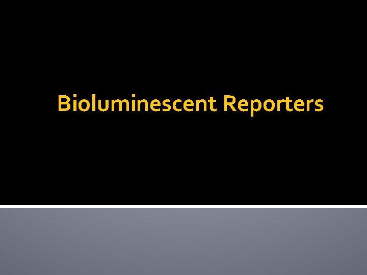 Bioluminescent Reporters