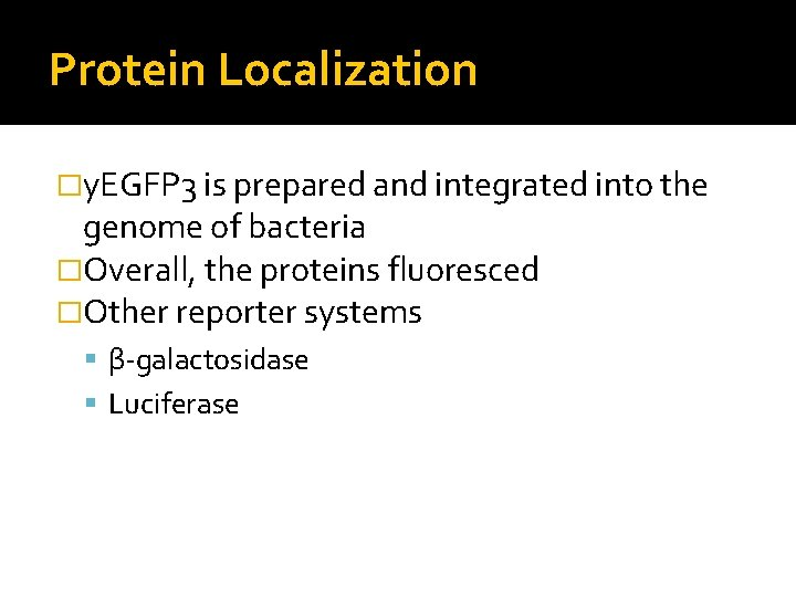 Protein Localization �y. EGFP 3 is prepared and integrated into the genome of bacteria