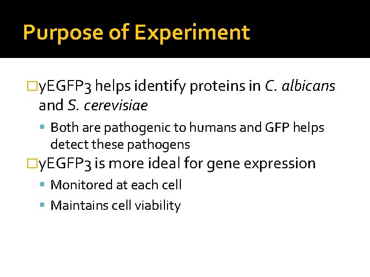 Purpose of Experiment �y. EGFP 3 helps identify proteins in C. albicans and S.