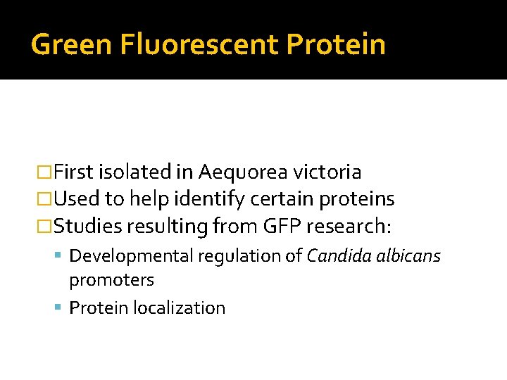 Green Fluorescent Protein �First isolated in Aequorea victoria �Used to help identify certain proteins
