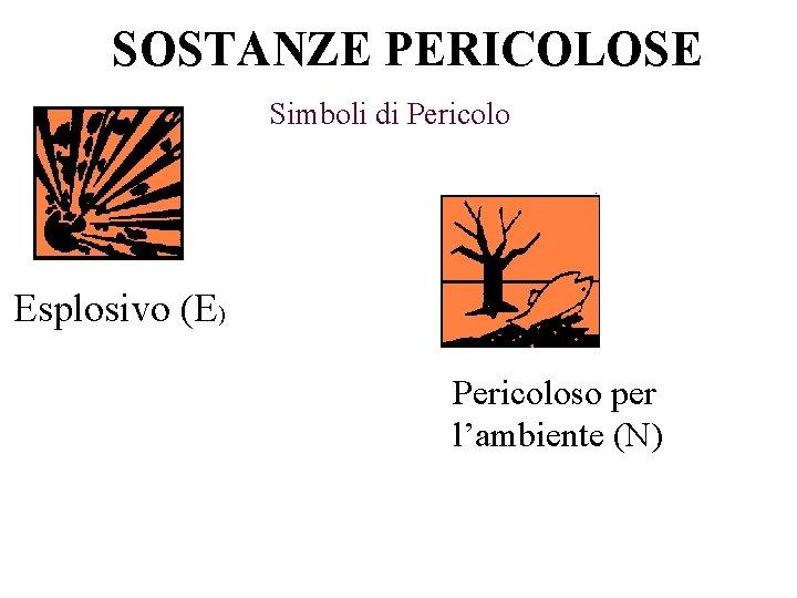 SOSTANZE PERICOLOSE Simboli di Pericolo Esplosivo (E) Pericoloso per l'ambiente (N)