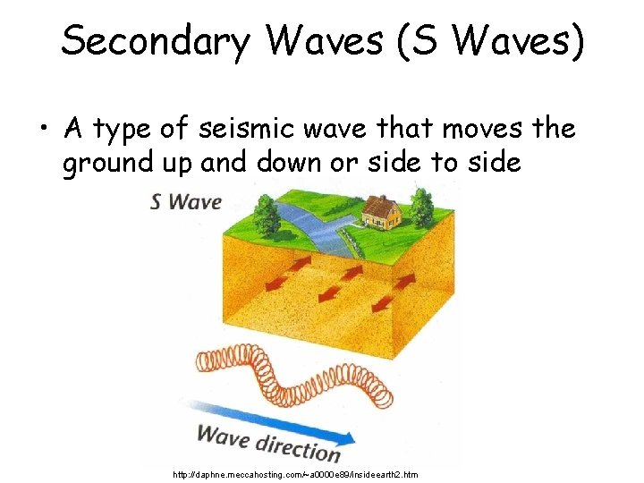 Secondary Waves (S Waves) • A type of seismic wave that moves the ground