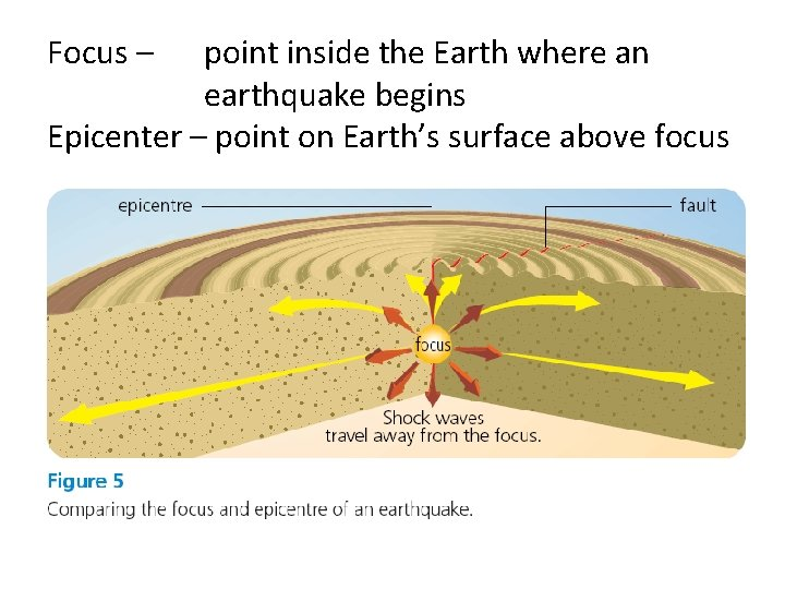 Focus – point inside the Earth where an earthquake begins Epicenter – point on