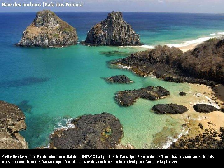 Baie des cochons (Baía dos Porcos) Cette île classée au Patrimoine mondial de l'UNESCO