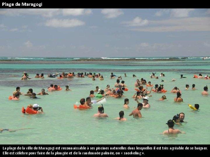 Plage de Maragogi La plage de la ville de Maragogi est reconnaissable à ses