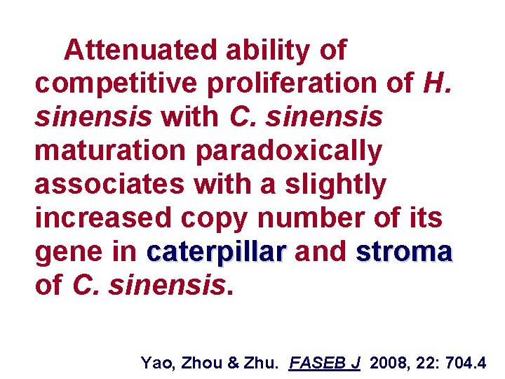Attenuated ability of competitive proliferation of H. sinensis with C. sinensis maturation paradoxically associates