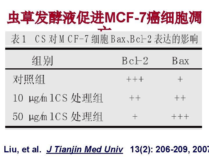 虫草发酵液促进MCF-7癌细胞凋 亡 Liu, et al. J Tianjin Med Univ 13(2): 206 -209, 2007