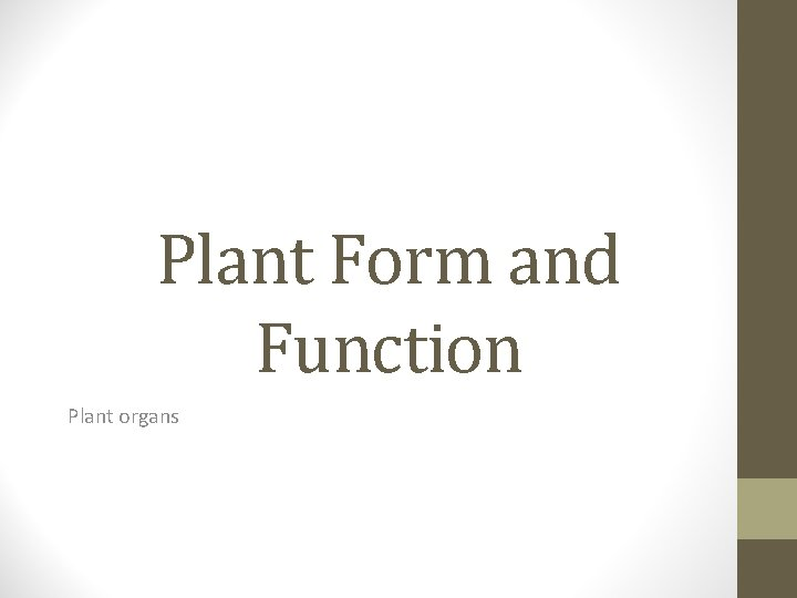 Plant Form and Function Plant organs