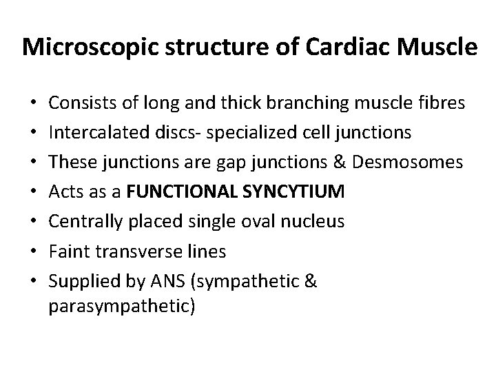 Microscopic structure of Cardiac Muscle • • Consists of long and thick branching muscle