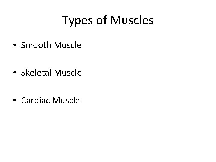 Types of Muscles • Smooth Muscle • Skeletal Muscle • Cardiac Muscle