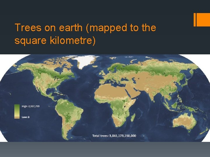 Trees on earth (mapped to the square kilometre)