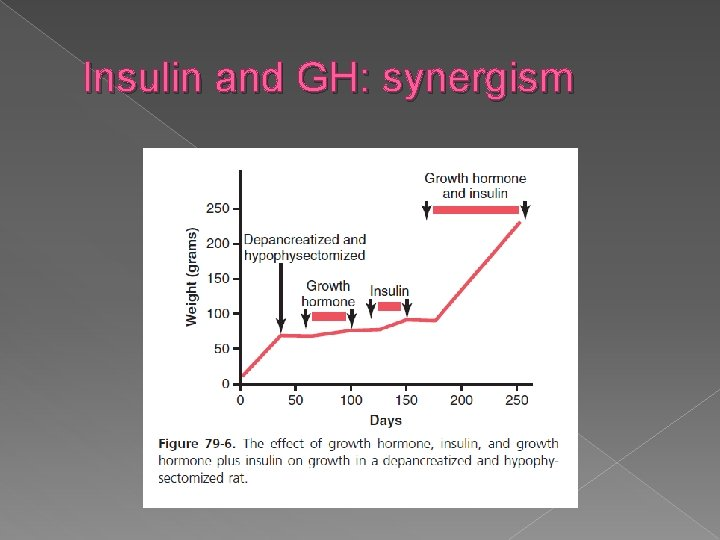 Insulin and GH: synergism