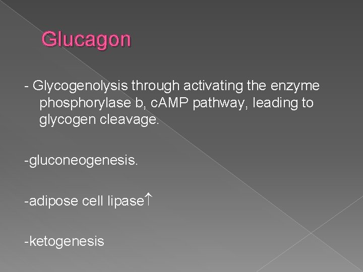 Glucagon - Glycogenolysis through activating the enzyme phosphorylase b, c. AMP pathway, leading to