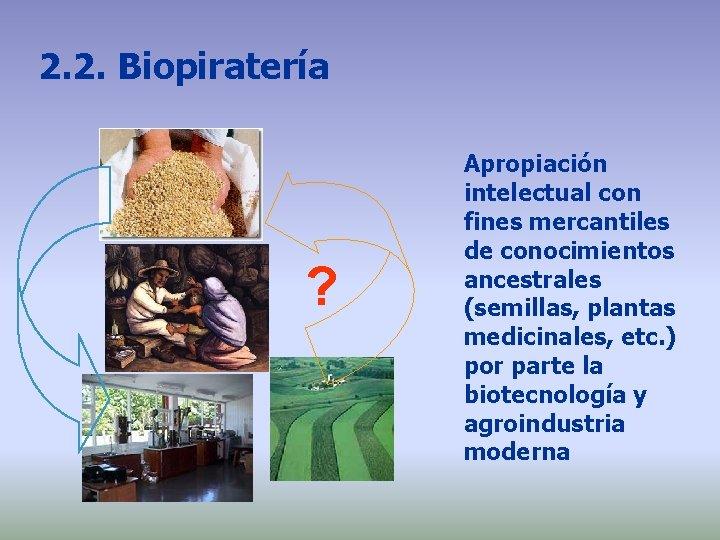 2. 2. Biopiratería ? Apropiación intelectual con fines mercantiles de conocimientos ancestrales (semillas, plantas