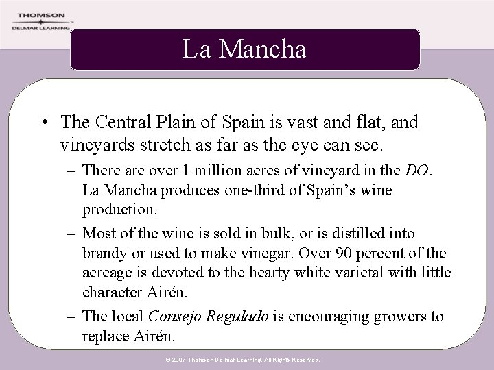 La Mancha • The Central Plain of Spain is vast and flat, and vineyards