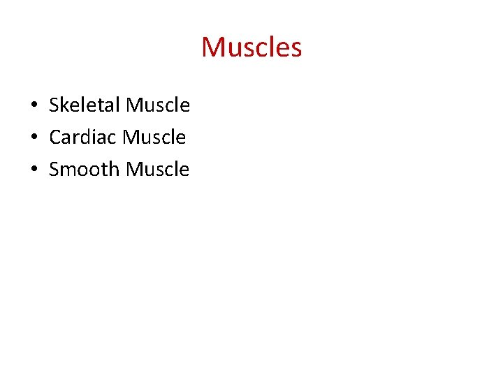 Muscles • Skeletal Muscle • Cardiac Muscle • Smooth Muscle