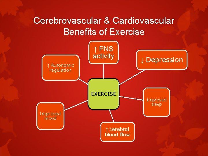 Cerebrovascular & Cardiovascular Benefits of Exercise ↑ PNS activity ↑ Autonomic regulation ↓ Depression