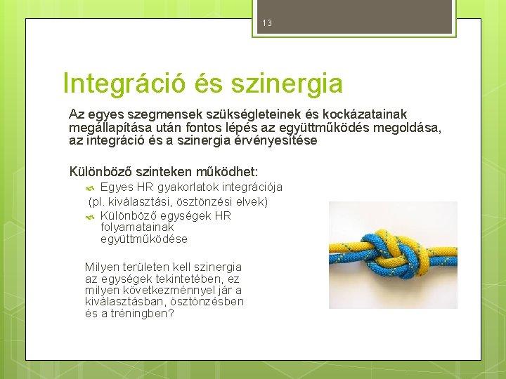 13 Integráció és szinergia Az egyes szegmensek szükségleteinek és kockázatainak megállapítása után fontos lépés