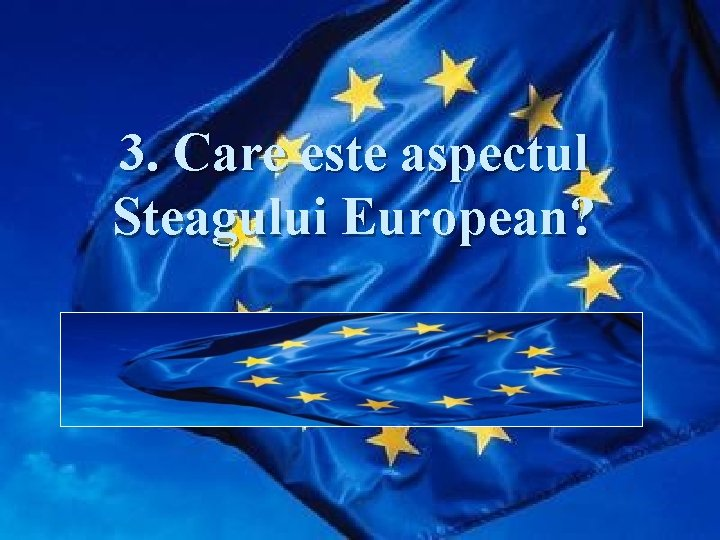 3. Care este aspectul Steagului European? Răspuns: Steagul European este format dintr-un cerc de