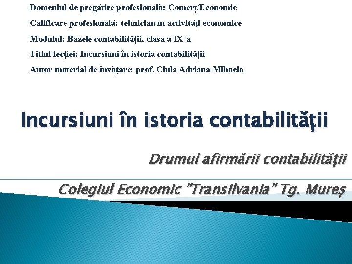 Domeniul de pregătire profesională: Comerț/Economic Calificare profesională: tehnician în activități economice Modulul: Bazele contabilității,