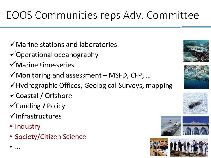 EOOS Communities reps Adv. Committee üMarine stations and laboratories üOperational oceanography üMarine time-series üMonitoring