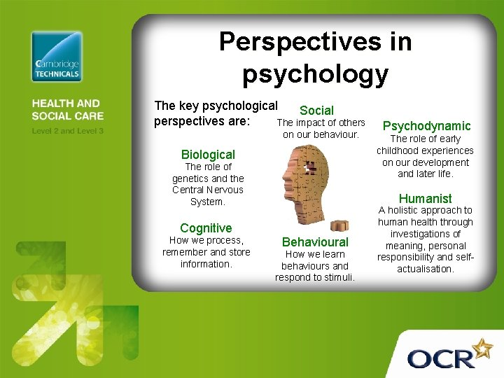 Perspectives in psychology The key psychological Social perspectives are: The impact of others on