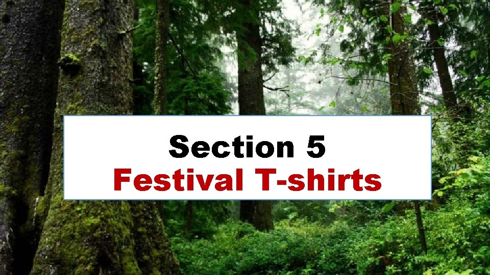 Section 5 Festival T-shirts