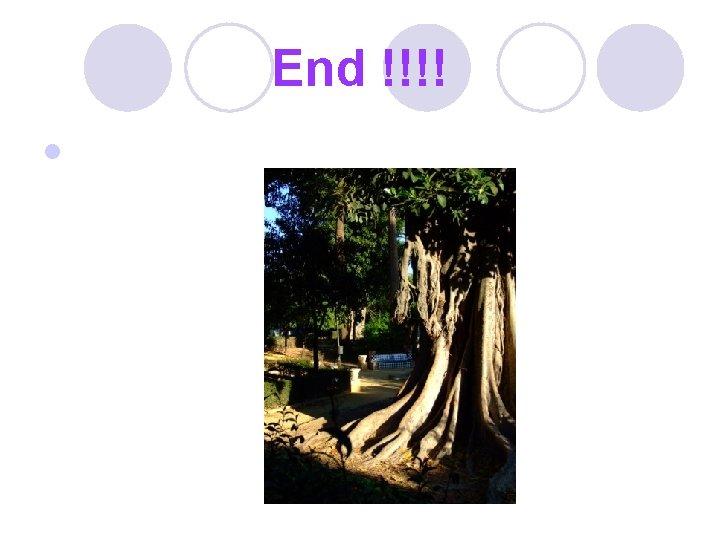 End !!!! l