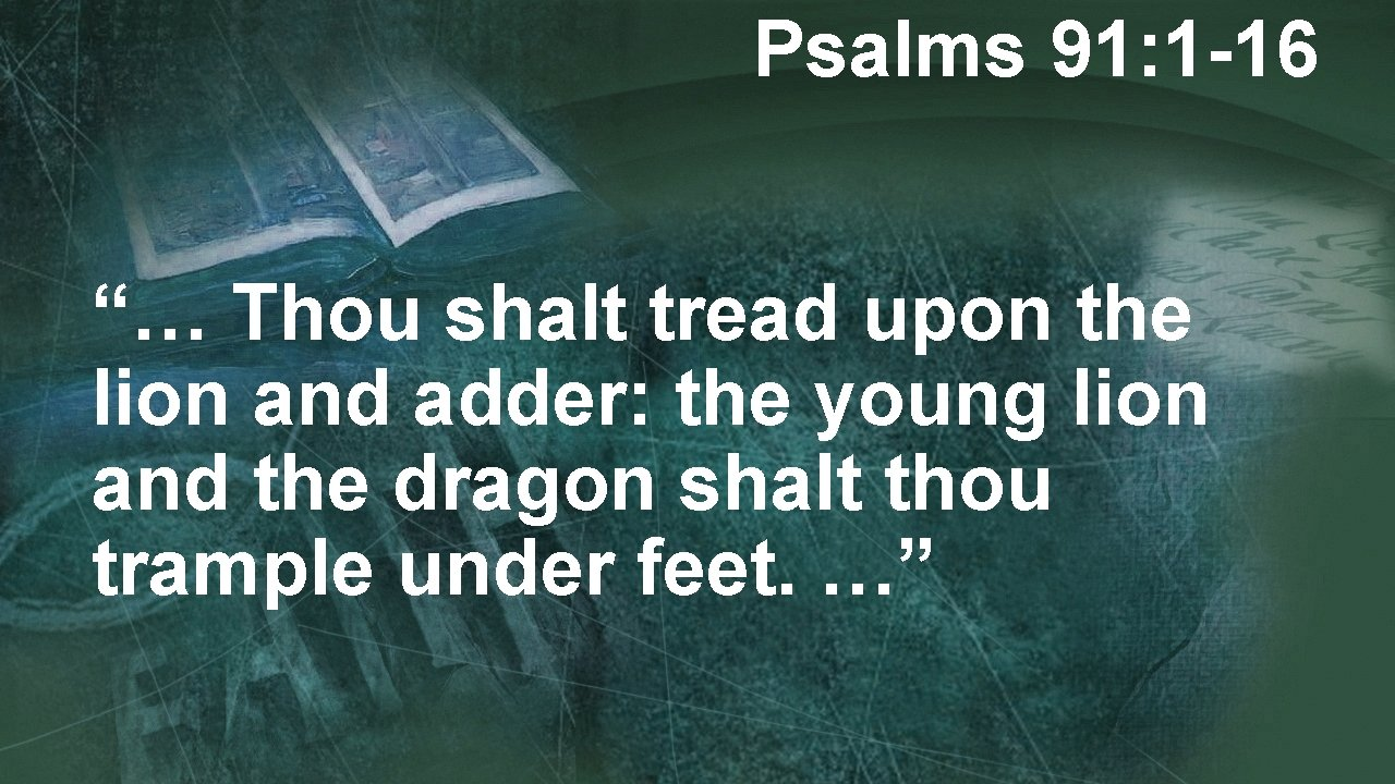 """Psalms 91: 1 -16 """"… Thou shalt tread upon the lion and adder: the"""