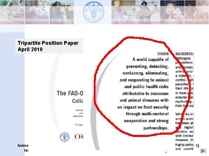 Tripartite Position Paper April 2010 Animal Production and Health Division Development Law Service (LEGN)