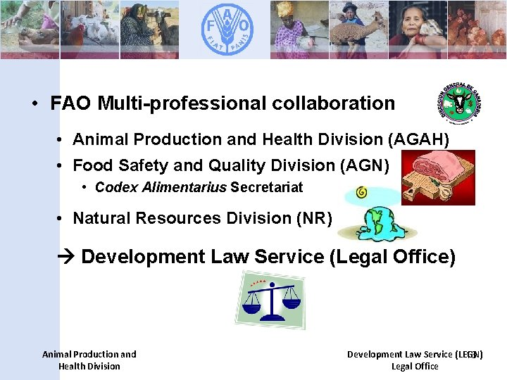 • FAO Multi-professional collaboration • Animal Production and Health Division (AGAH) • Food