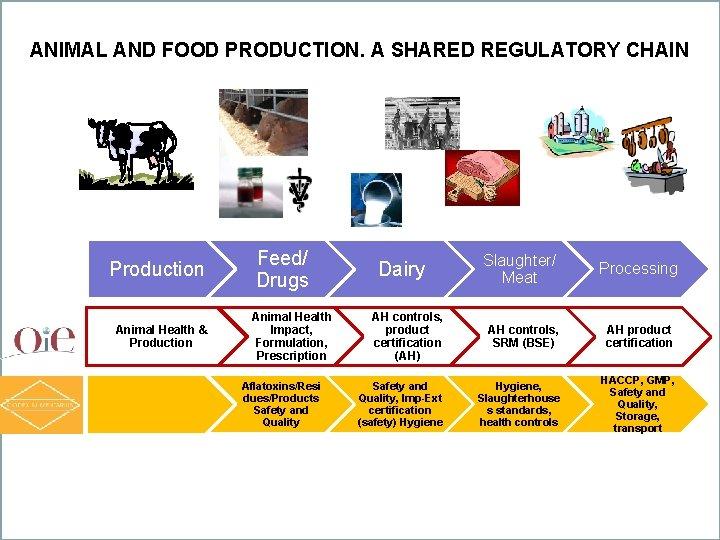 ANIMAL AND FOOD PRODUCTION. A SHARED REGULATORY CHAIN Production Animal Health & Production Feed/