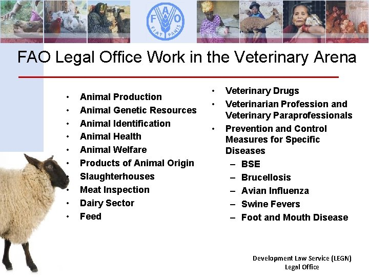 FAO Legal Office Work in the Veterinary Arena • • • Animal Production Animal