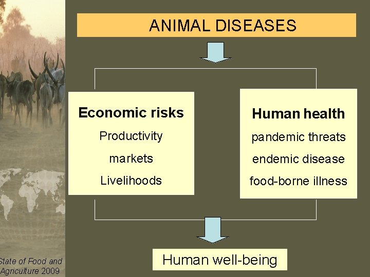 ANIMAL DISEASES Economic risks Human health Productivity pandemic threats markets endemic disease Livelihoods food-borne