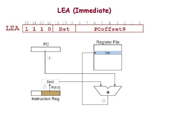 LEA (Immediate)