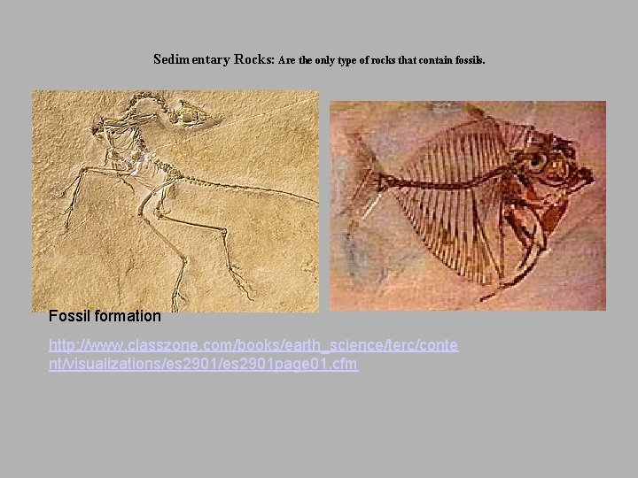 Sedimentary Rocks: Are the only type of rocks that contain fossils. Fossil formation http:
