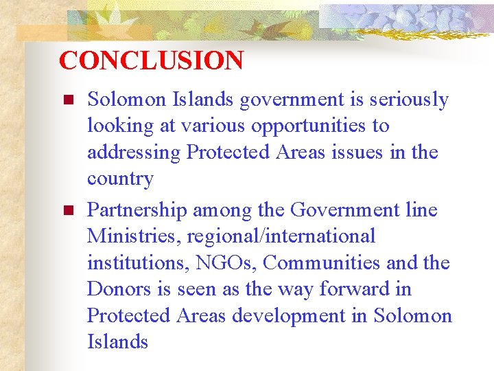CONCLUSION n n Solomon Islands government is seriously looking at various opportunities to addressing