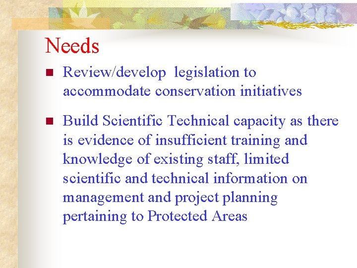Needs n Review/develop legislation to accommodate conservation initiatives n Build Scientific Technical capacity as