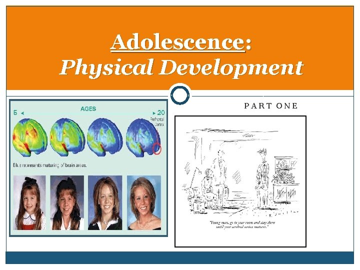 Adolescence: Physical Development PART ONE